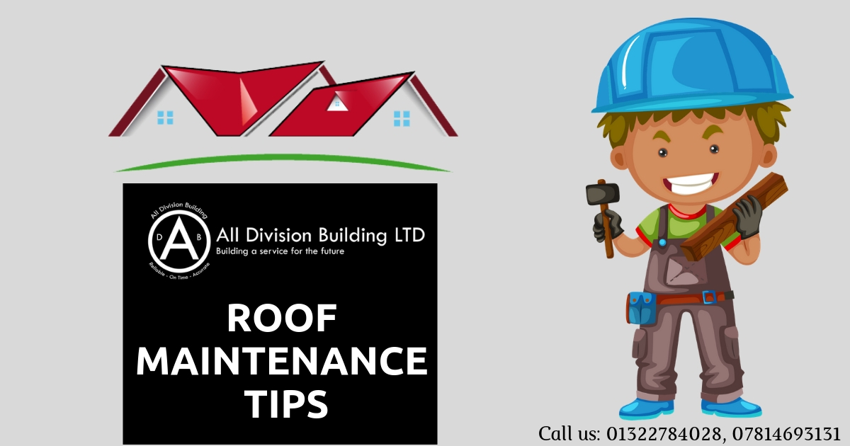 Roof Maintenance Tips | Infographic